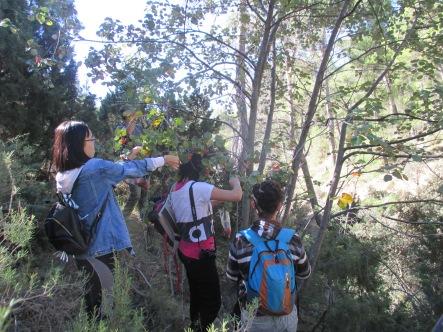 Grupo de voluntarios en la zona de La Carrasca.